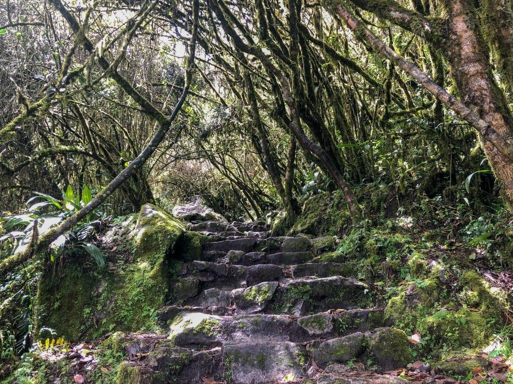 Les marches de la montagne Machu Picchu