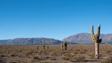Photo of Road-trip : 4 jours sur la boucle Sud de Salta