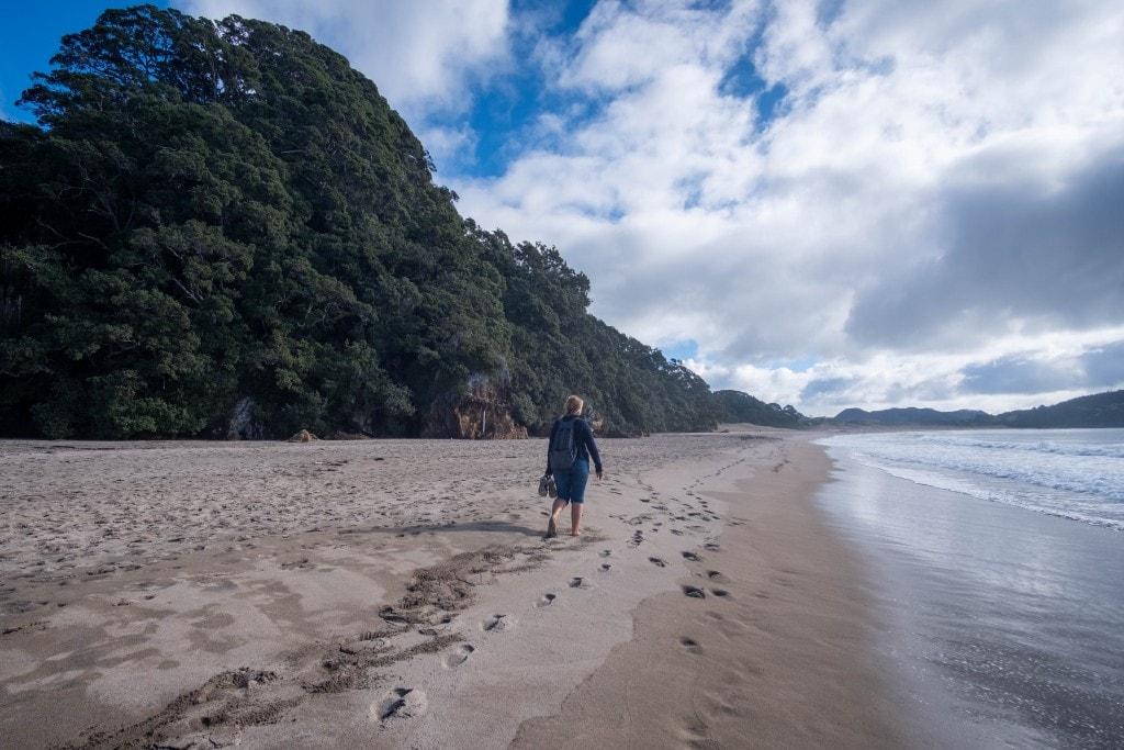 Plage de Nouvelle-Zélande en hiver