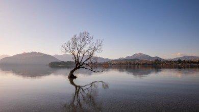 Photo de Itinéraire de notre road trip en Nouvelle Zélande : l'île du Sud